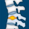 Osteologie und Physikalische Medizin
